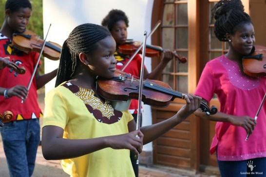 Violin players 1
