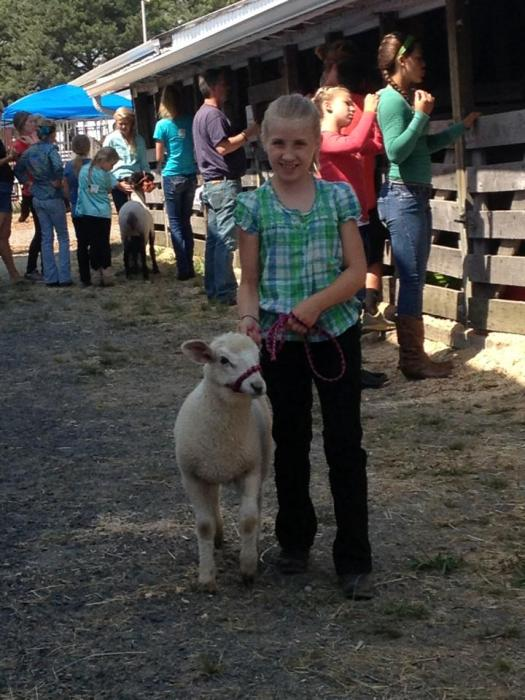 Nichole Kelley sent this picture of AshlynRose Kelley waiting to show her baby lamb Rosebud.