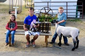 From left: Kasey Gaudette, champion rate of gain; Jacob Shoop, overall reserve champion, market lamb, reserve rate of gain, champion homegrown; Alex Tyndall, overall grand champion, market and overall.