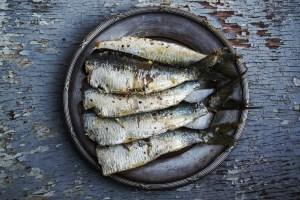 Mercurio y pescado sardinas