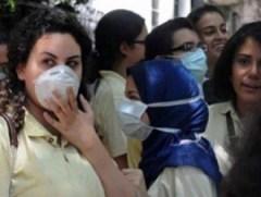 انفلونزا الخنازير في مصر
