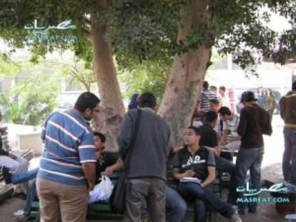 نتائج كليات جامعة حلوان