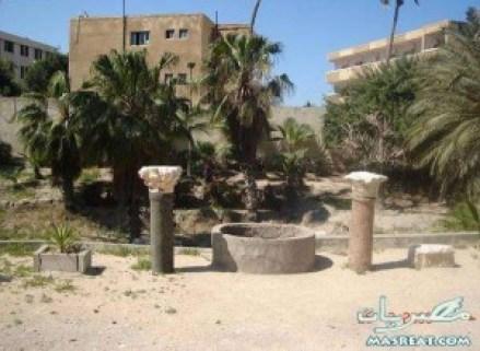 نتائج كلية السياحة والفنادق جامعة الاسكندرية