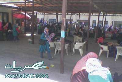 سور الازبكية في جامعة القاهرة
