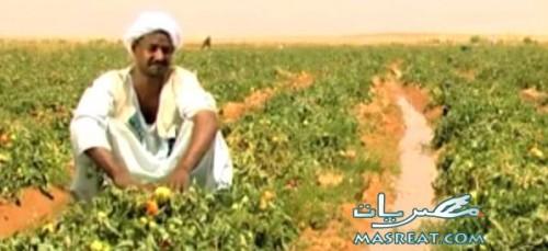 ضريبة الاراضي الزراعية