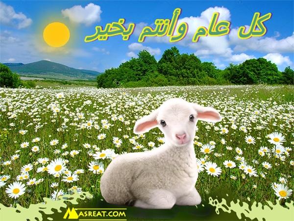صورة خروف العيد باحضان الطبيعة