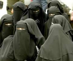 هاني هلال : قرار منع النقاب بالمدن من اختصاص رؤساء الجامعات