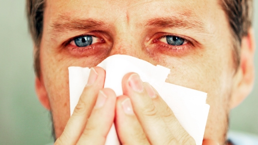 9 habits that make allergies worse – Allergies – MSN Healthy Living