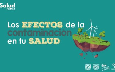 Los Efectos de la Contaminación Ambiental en tu Salud