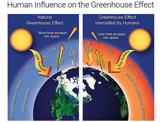 Image result for greenhouse gases