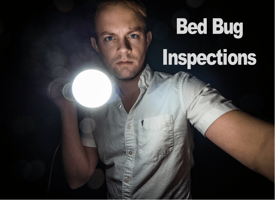 The Most Critical Phase of any Bed Bug Control Program – Inspection