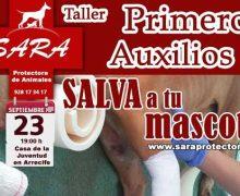 El Ayuntamiento de Arrecife colabora con SARA en un taller gratuito de primeros auxilios a mascotas