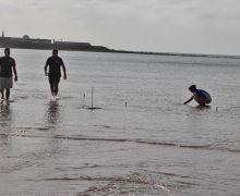 El Ayuntamiento de Arrecife instala un dispositivo en El Reducto para proteger la Zostera noltei