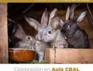 El Cabildo de Lanzarote ofrecerá un curso sobre la cría de conejos