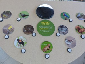 Soundboard display of nature music