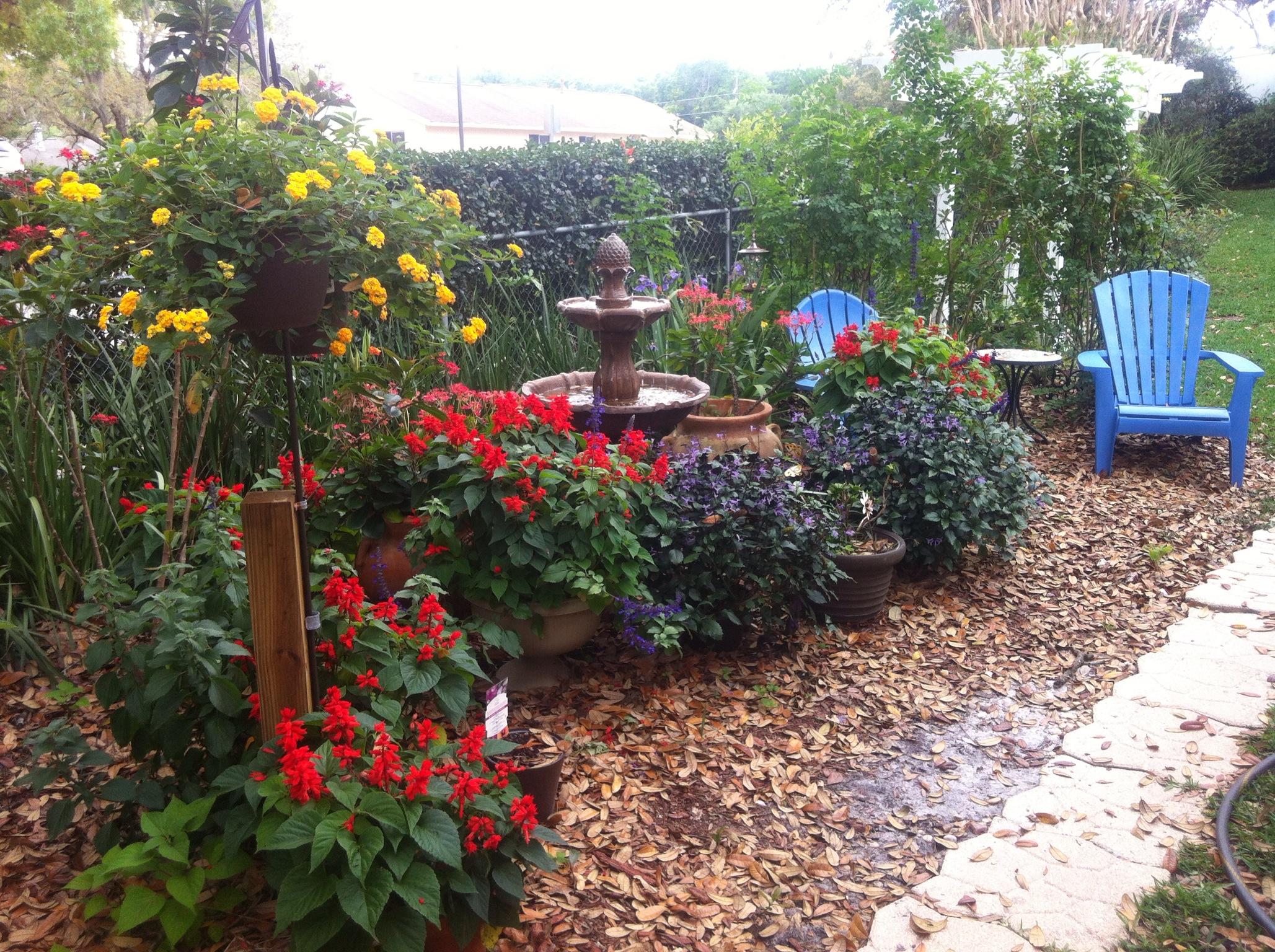Free Hummingbird Garden Designs PDF on Birds Backyard Landscapes id=49375