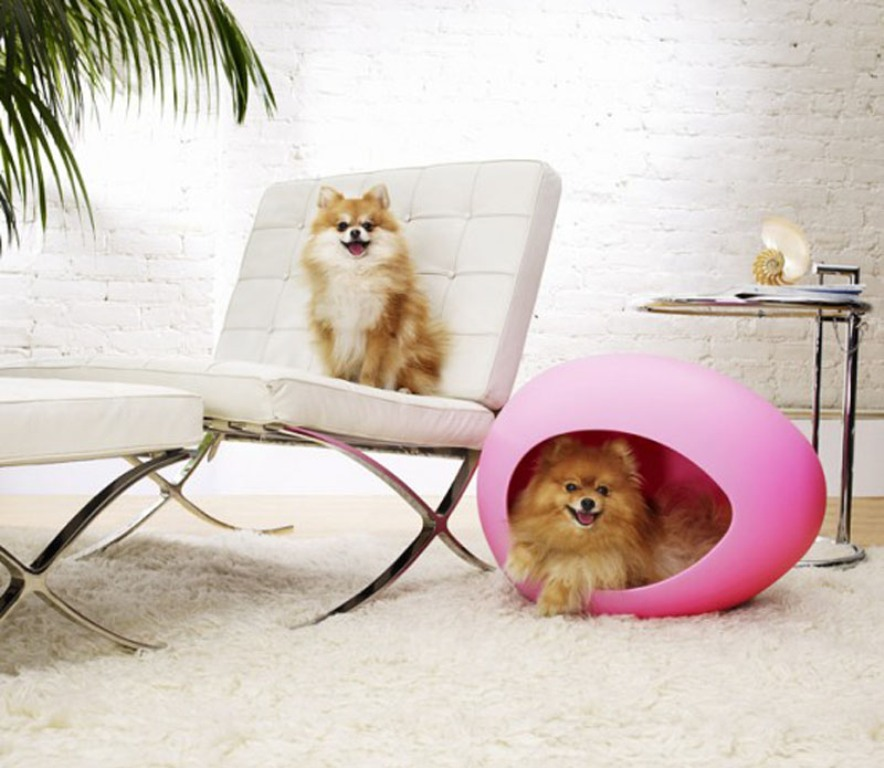 Cute-dogs-in-the-pink-pets-bed