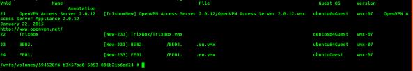 schermata di output