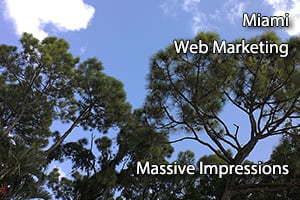 miami web marketing