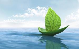 Transformación sostenible
