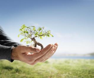Beneficios de la transición a una empresa sostenible