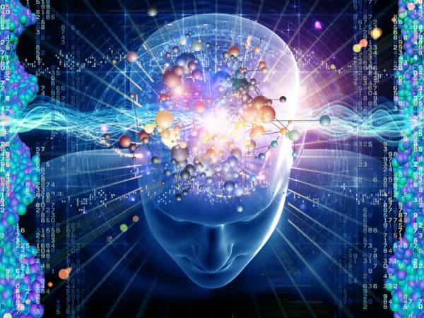 Cara Meningkatkan Daya Ingat Dan Daya Tangkap Otak Secara Alami