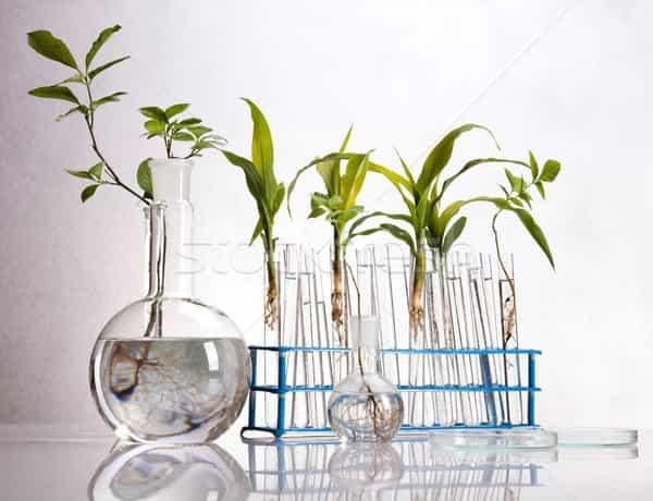 Materi Kimia Organik | Artikel Kimia Organik Dasar Dan Download Pdf