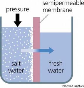 Reverse Osmosis/Osmosis Balik