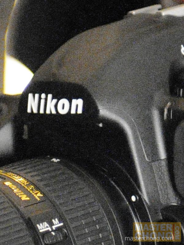 Nikon D300 ISO6400 Sample Photo at 100%