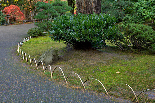 Curved Bamboo Border
