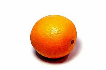 orange_by_darren_Hester_350o.jpg