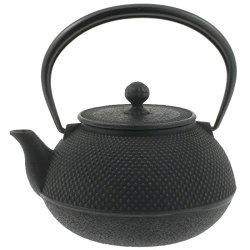Enjoy Nambu Tekki Japanese cast iron teapot (kyusu)