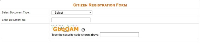 Delhi Widow Pension Application Form Online
