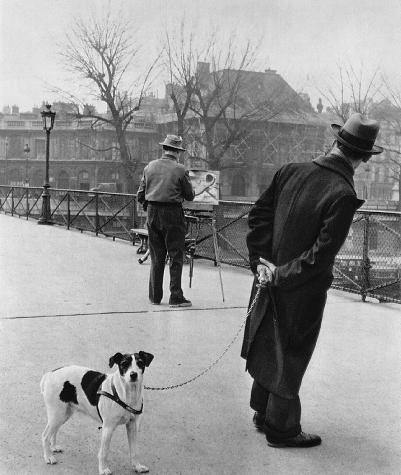 Fox terrier on the Pont des Arts