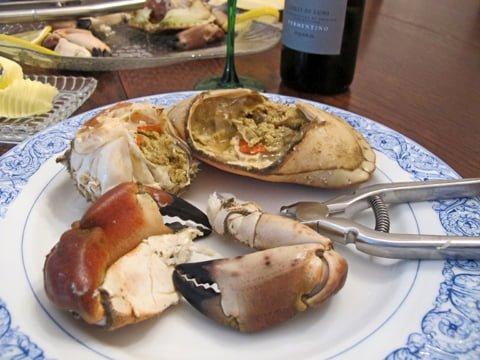 Krabbe med tang