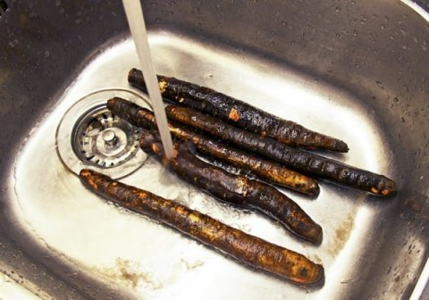 Svartrot vaskes