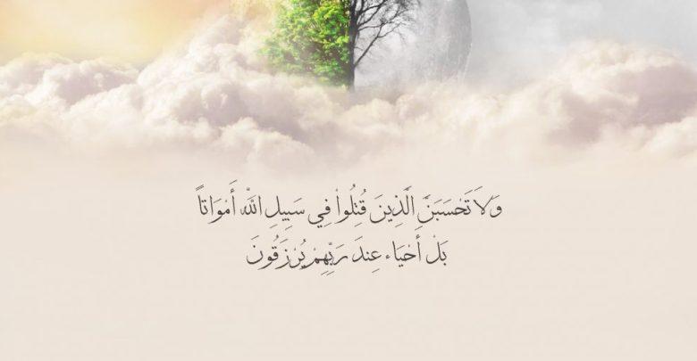 ولا تحسبن الذين قتلوا في سبيل الله أمواتا سبب نزول الاية للشهداء