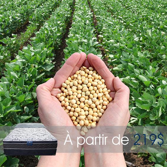 Produit - Mousse de Soya