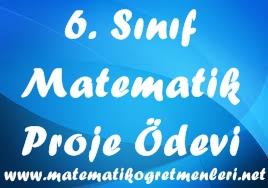 6. Sınıf matematik proje