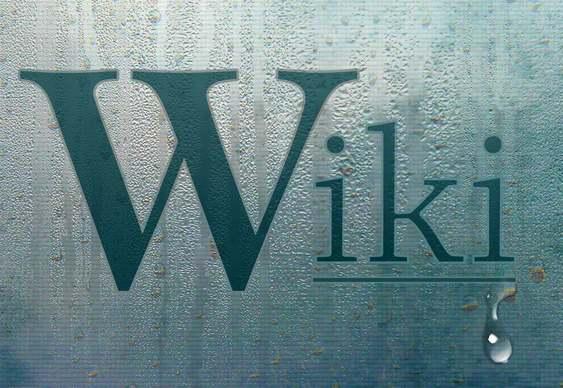 WikiLeaks não vai acabar