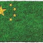 O mundo na era da ecocivilização sob a liderança da China