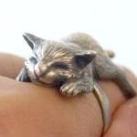 Gatinho dorme esparramado sobre o dedo em anel de prata
