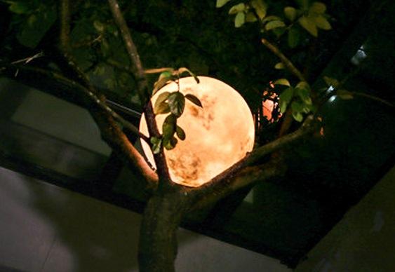 Decoração lua cheia