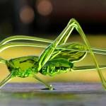 Aracnídeos e insetos de vidro fundido que não metem medo