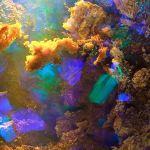 Paisagem fantástica dentro de uma pedra preciosa opala