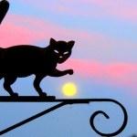 Os gatos que se equilibram no alto dos letreiros retrô de metal