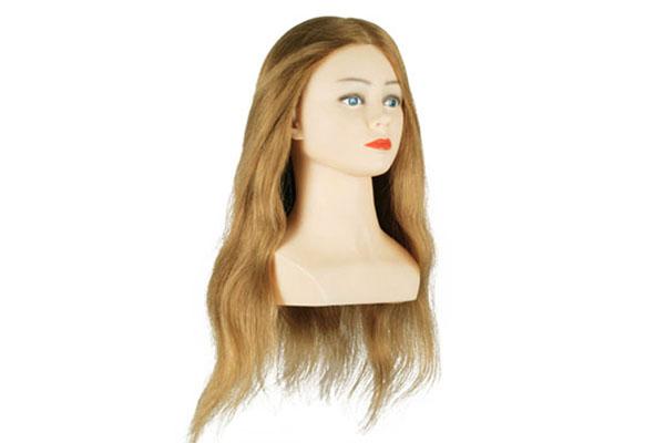 tete special concours coiffure materiel d apprentissage coiffure materiel pedagogique tete d etude anais