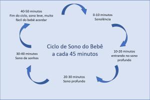 ciclo de sono