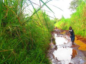 Access to Kiryabutuzi