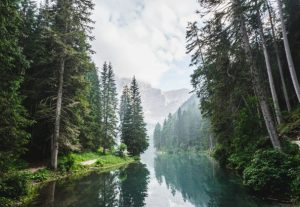 health Benefits of spending time in Nature